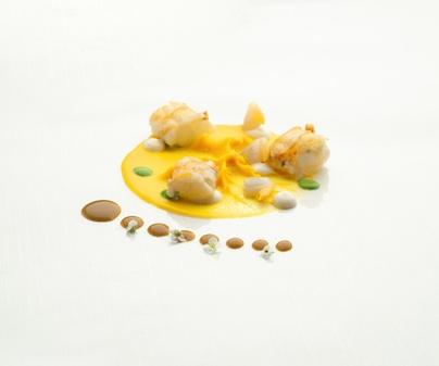 Cigala crema de zanahoria lactonesa de vainilla