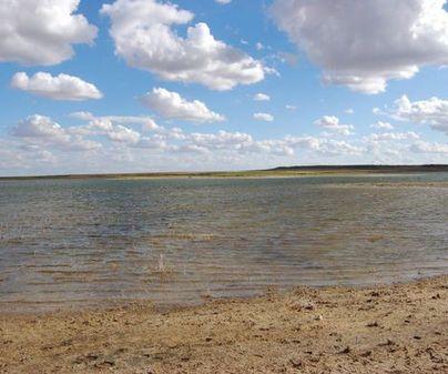 Laguna de Salicor