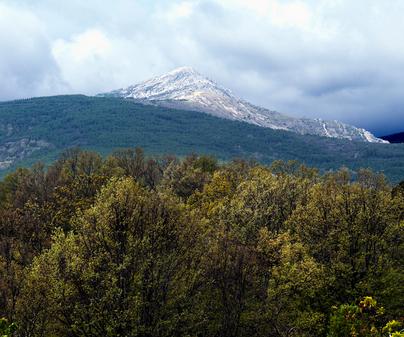 Macizo del Pico del Lobo Cebollera