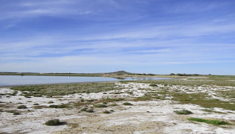 Lagunas El Longar, Altillo Grande y Altillo Chica