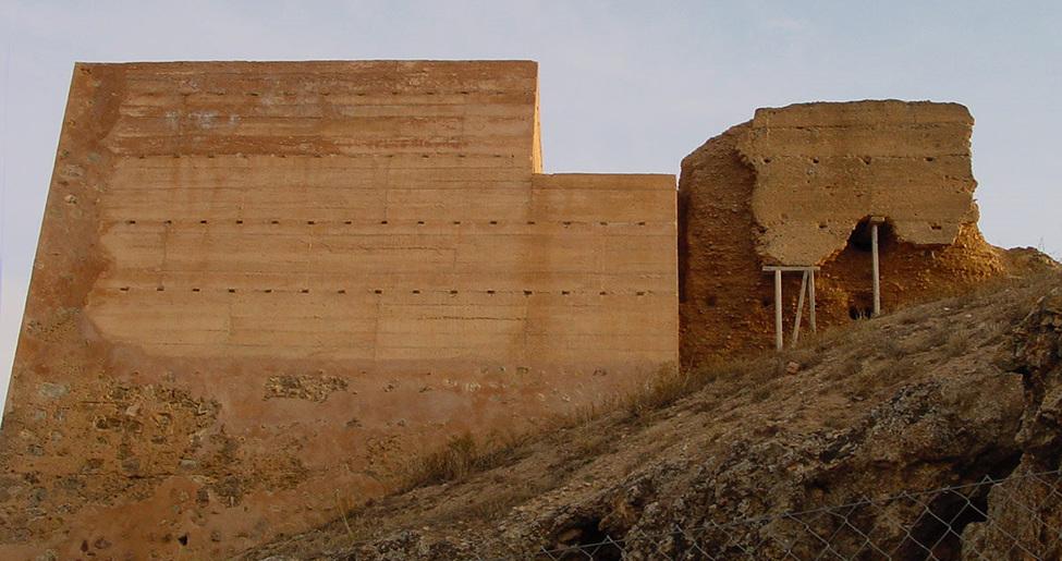 Castillo de Montealegre del Castillo