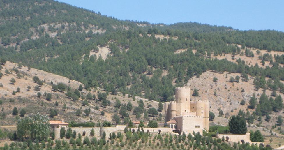 Castillo de Torrefuerte