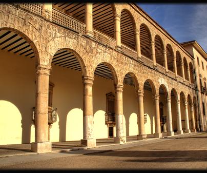 Palacio del Infantado 1