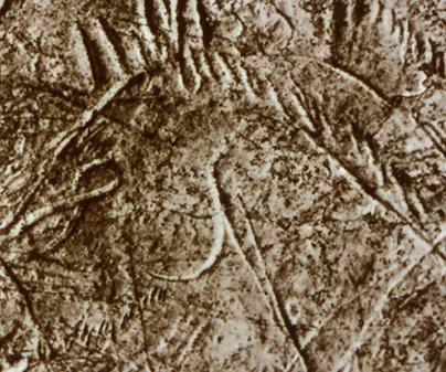 Arte rupestre - Paleolítico