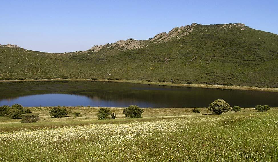 Laguna de la Alberquilla