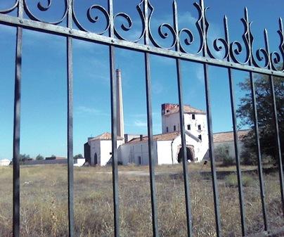 Bodegas y Fábrica de Harinas- Pedro Muñoz