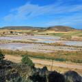 Salinas - Olmeda de Jadraque