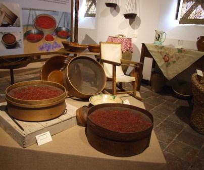 Museo del Azafrán