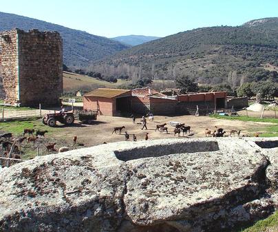 Castillo de Malamoneda