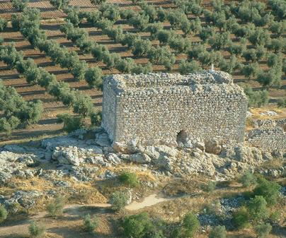 Castillo de Torre Tolanca