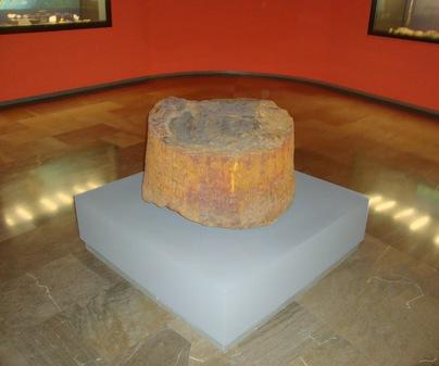 Museo Provincial de Ciudad Real - Fósil