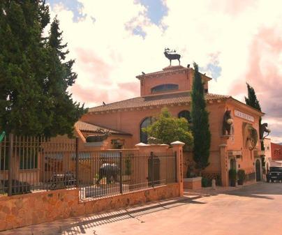 Museo de la Caza y la Naturaleza 1