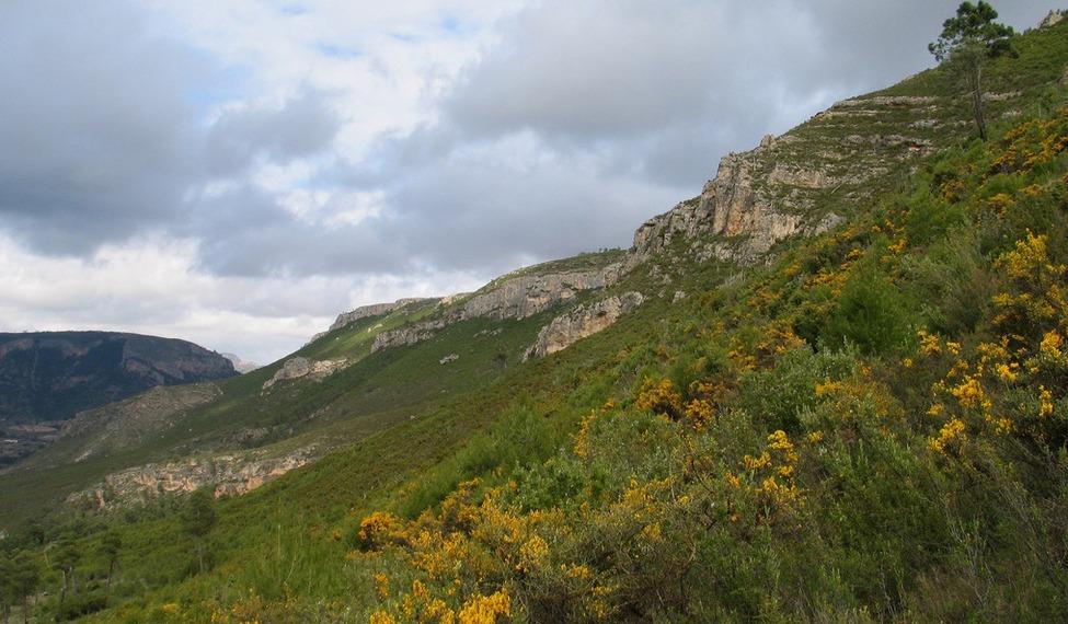 Microrreserva Cerro de Rala
