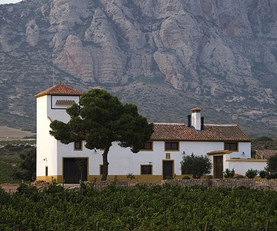 Bodegas y Viñedos Venta La Vega S.L.