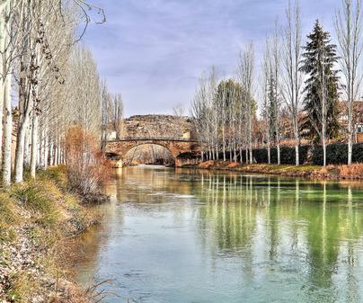 Puente de Trillo