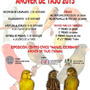 XIX Concurso Ornitológico