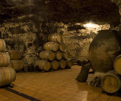 bodega dionisos barricas en la cueva