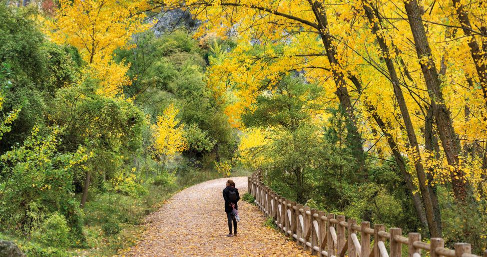 cuenca otoño blog