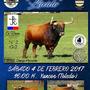 Toro Enmaromado de Yuncos