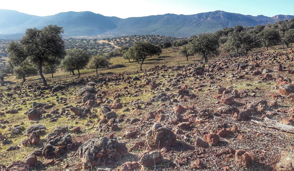 Volcán del Alhorín