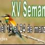 XV Semana Verde