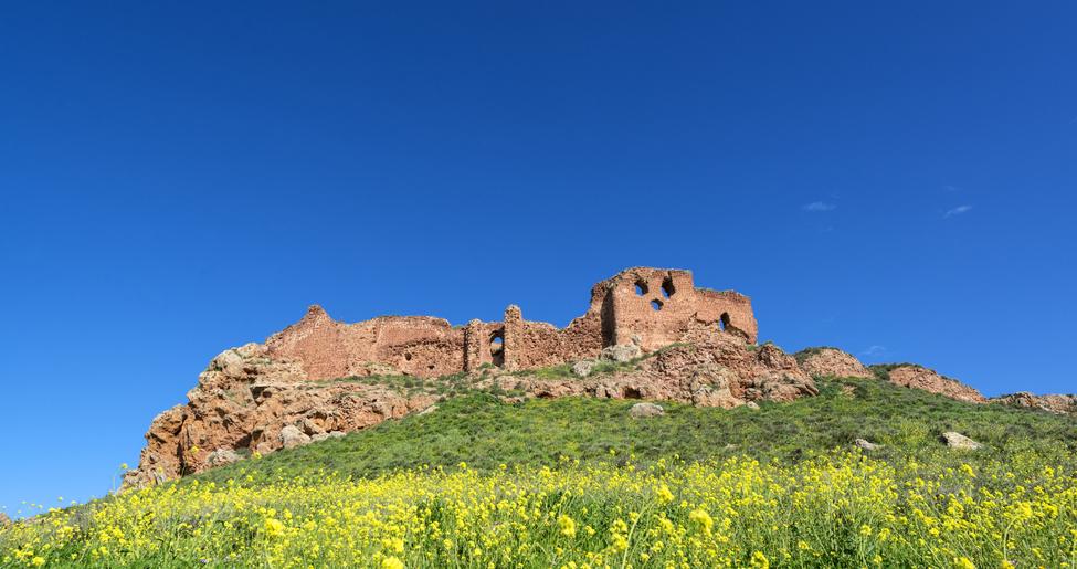 Castillo de la Estrella o de Montiel