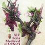 XIV Feria Medieval del Vino de Montearagón