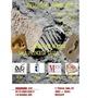 Exposición: Grupo Arte 6