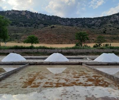 Salinas-Saelices de la Sal