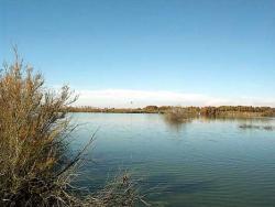 Laguna de Miguel Esteban. Humedales Manchegos