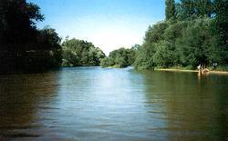 Río Alberche, afluente del Tajo, a su paso por Hormigos