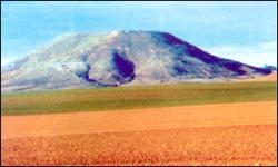 Monte de Alarilla