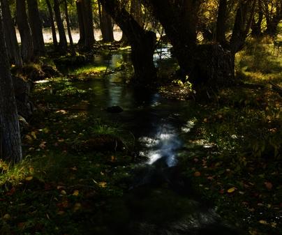 Río Júcar cerca de su nacimiento. Tragacete. Parque Natural de la Serranía de Cuenca. /<b>Antonio Real Hurtado</b>