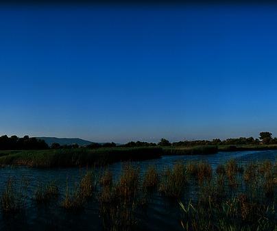 Parque Nacional de Las Tablas de Daimiel, entre Daimiel y Villarrubia de los Ojos (Ciudad Real)