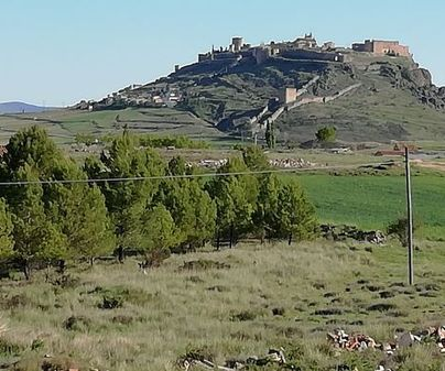 Casa rural La Albacara
