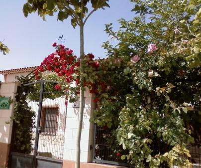 Entrada Casa Rural Los Mainetes en Fuente Álamo (Albacete)