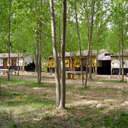 Casa Rural Cabaña Vado del Río Tus, Yeste