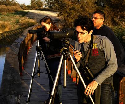Empresa de Turismo Activo Ecodestinos - Observación de Aves