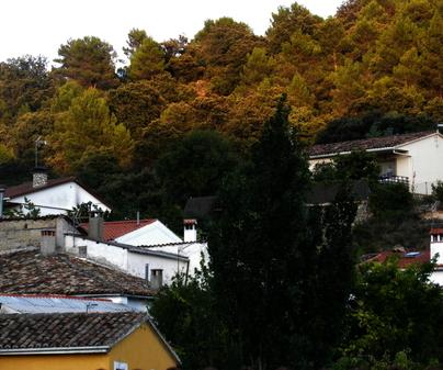 Vista del pueblo de Alique