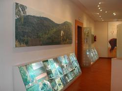 Zoorama, Museo de la Fauna de Cabañeros, en Retuerta del Bullaque (Ciudad Real)